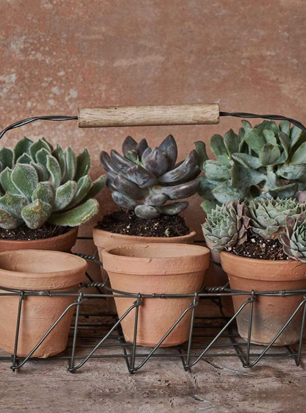 nkuku Living room Jara terracotta planter set - terracotta & iron