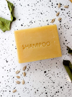 studio JUX care Aloe vera - shampoo bar