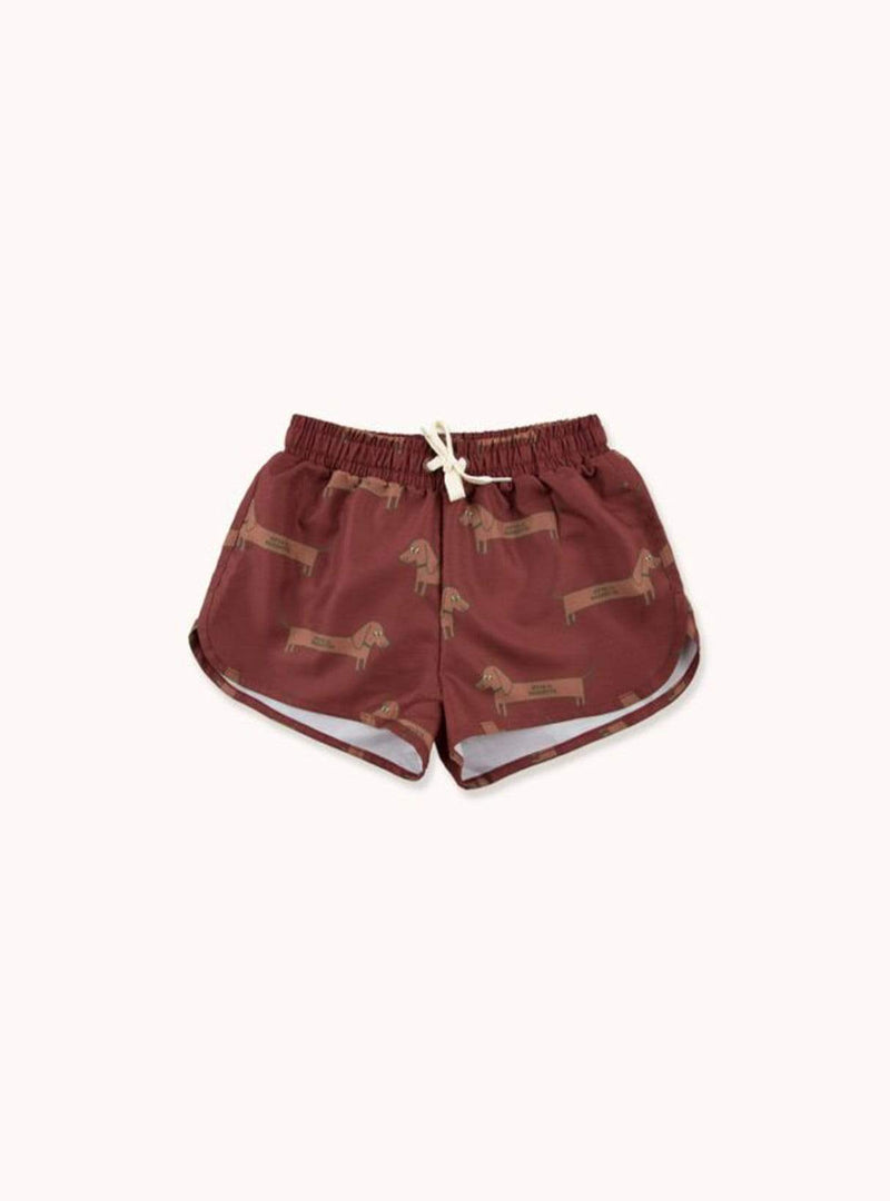 Il bassotto - swim shorts - dark brown/cinnamon