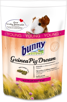 Bunny Nature - Dream Young Guinea Pig (No Alien$)