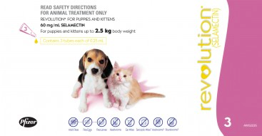 Revolution for Puppies and Kittens: under 2.5 kg ( No Alien$)