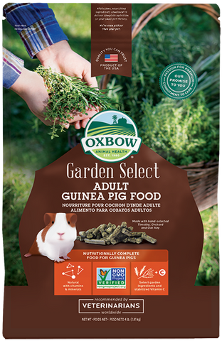 Garden Select Adult Guinea Pig (No Alien$)