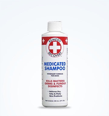 Remedy+Recovery Medicated Shampoo