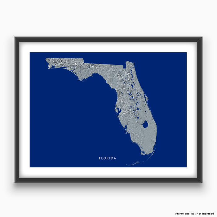 Florida state map with natural landscape in greyscale and a navy blue background designed by Maps As Art.