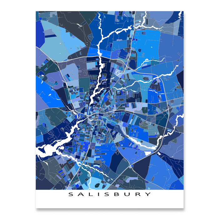 Maryland On Usa Map.Salisbury Map Print Maryland Usa Maps As Art