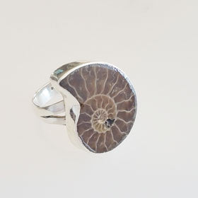 Ammonite Sterling Silver Ring