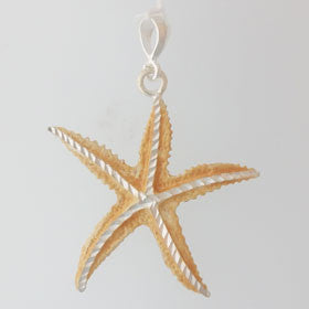 Sterling Silver Enameled Starfish Pendant