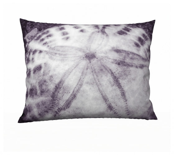 Sand Dollar 26 x 20 Pillow Case
