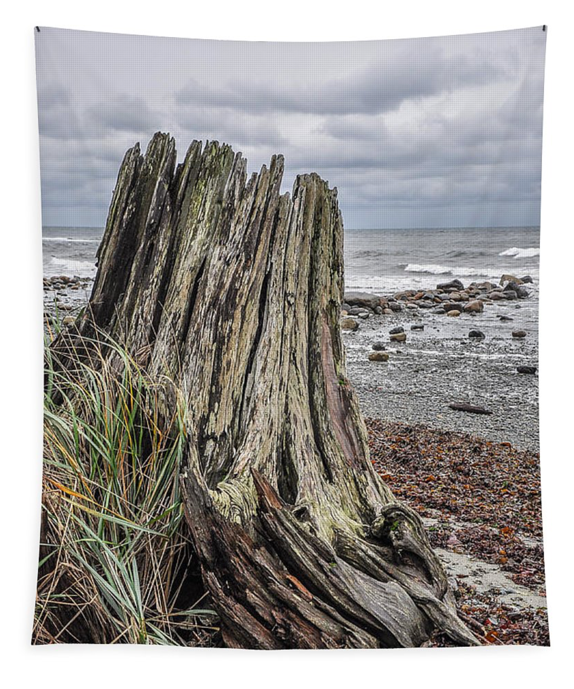 Gray Day Qualicum Beach Wall Tapestry