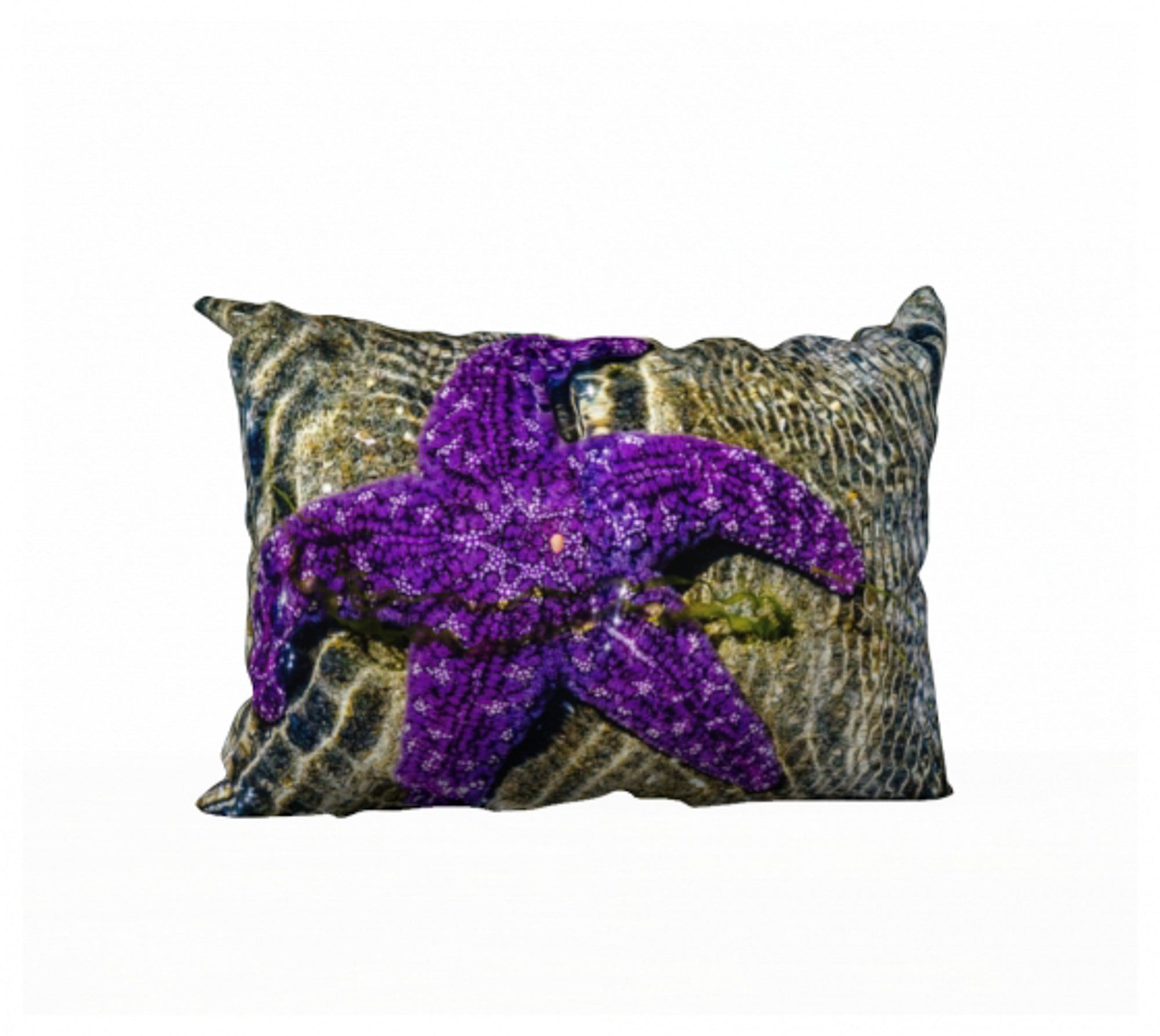 "Amazing Starfish 20"" x 14"" Pillow Case"