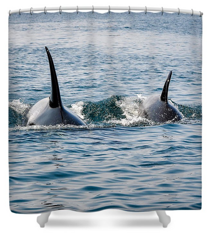 Orcas By My Side Shower Curtain
