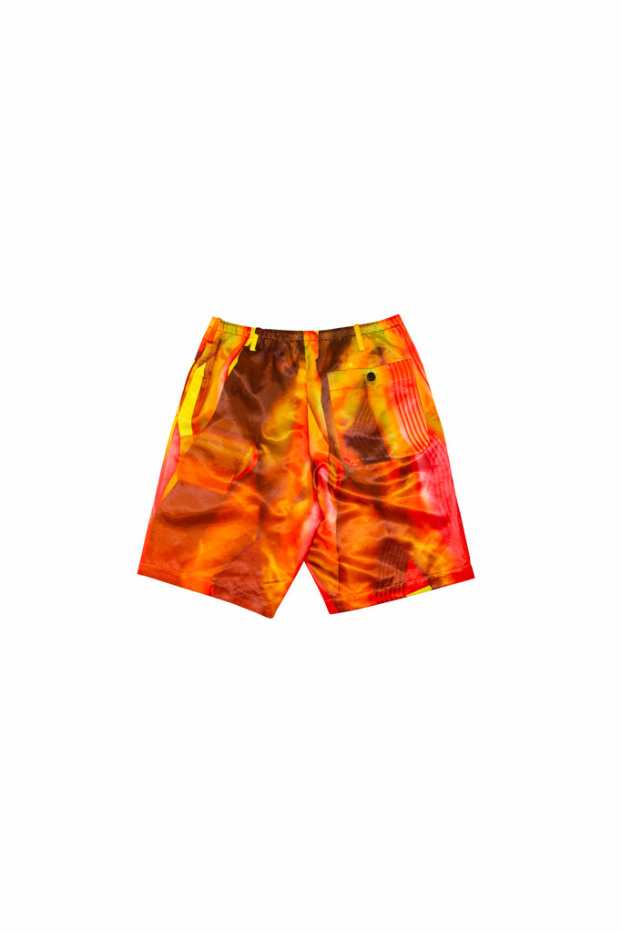 Dries Van Noten Pieny Print Short Pants In Red
