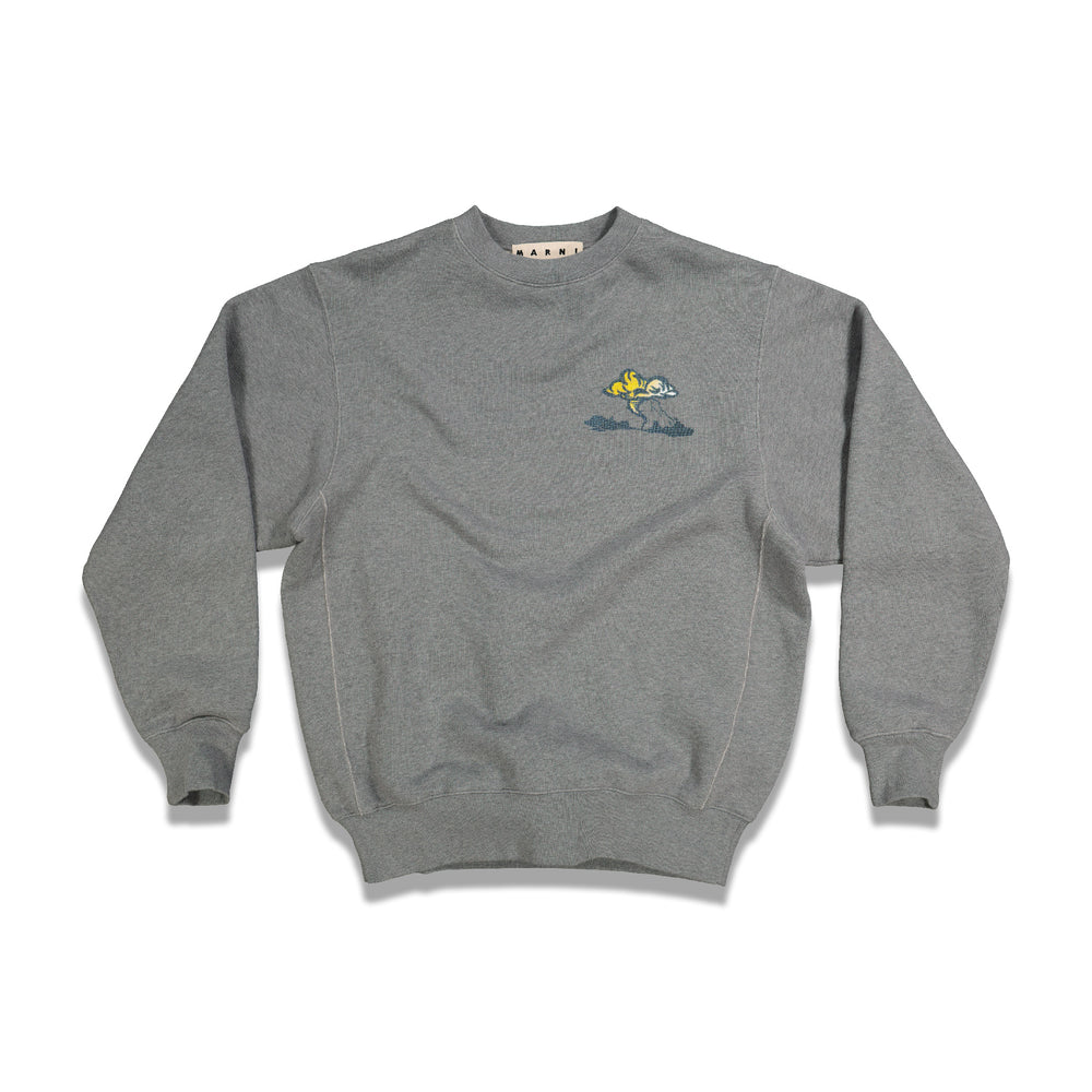 Printed Graphic Crewneck In Grey