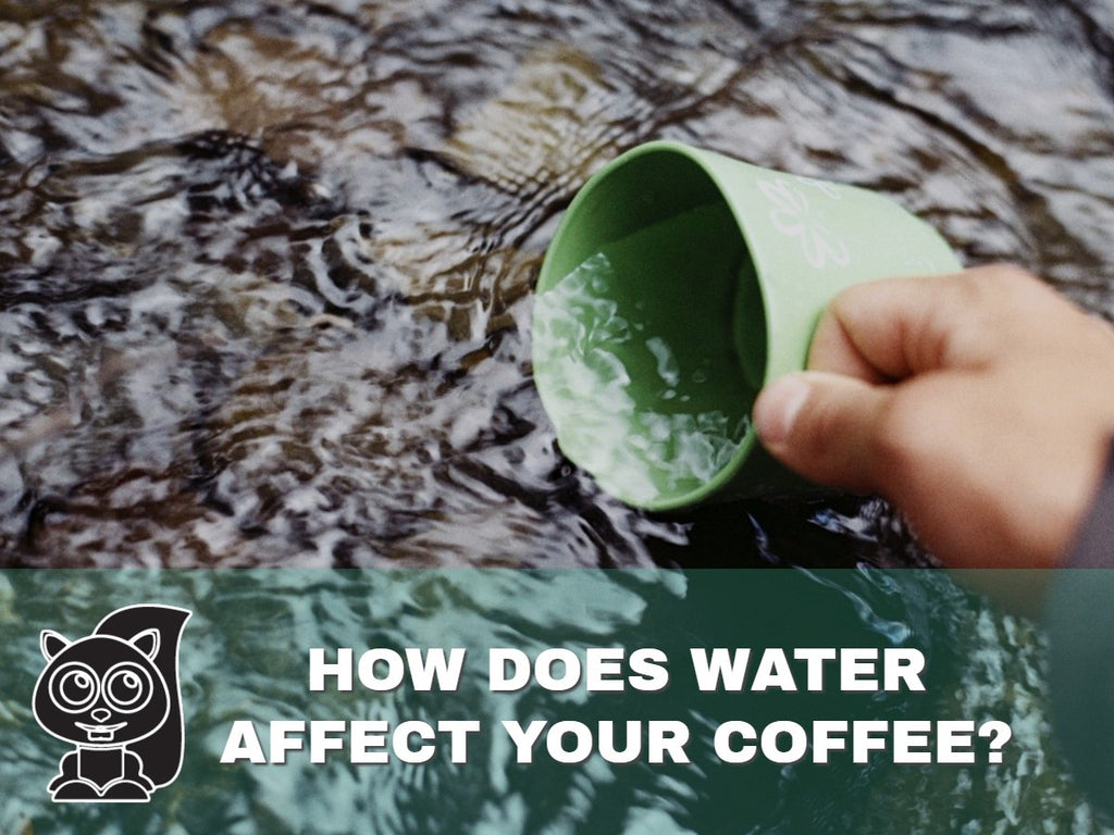How Does Water Affect Your Coffee?