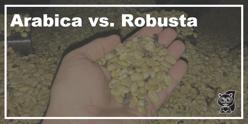 Arabica vs. Robusta