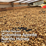 Colombia Aponte Nariño Honey Micro-Lot
