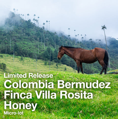 Finca Villa Rosita Honey Colombia Bermudez