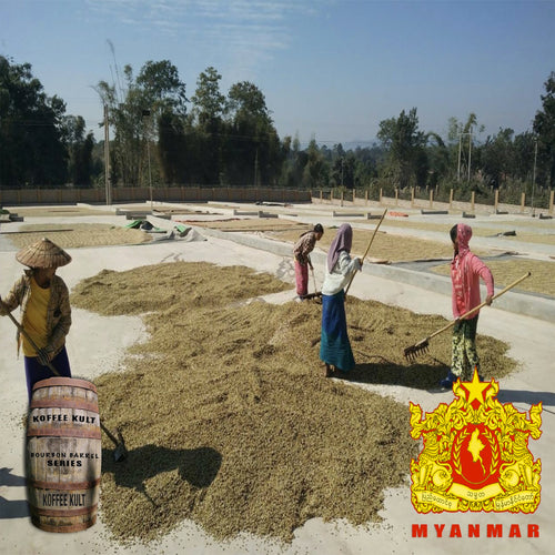 Bourbon Barrel Aged Myanmar Ywangan Washed Coffee **Limited Release**
