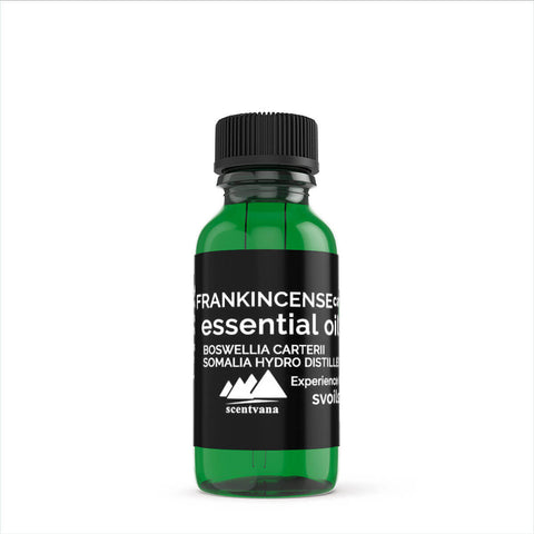 Frankincense Carterii Essential Oil