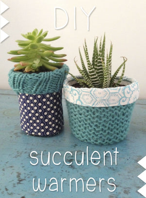 DIY Succulent Warmer Tutorial