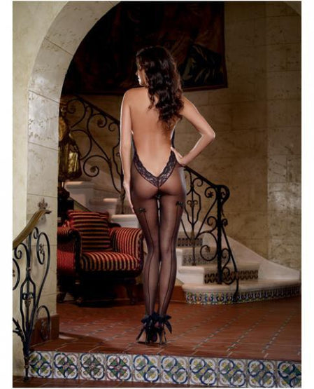 Sheer Bodystocking Black O/S 4