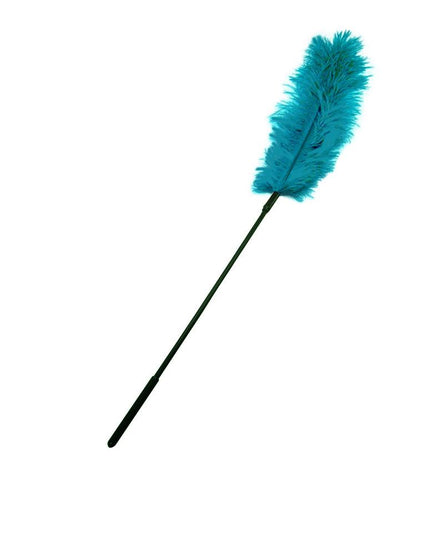 Sportsheets Ostrich Feather and Sex Games - Teal