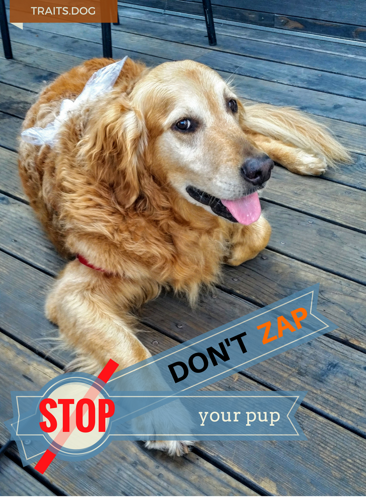 Don't zap your PUP!