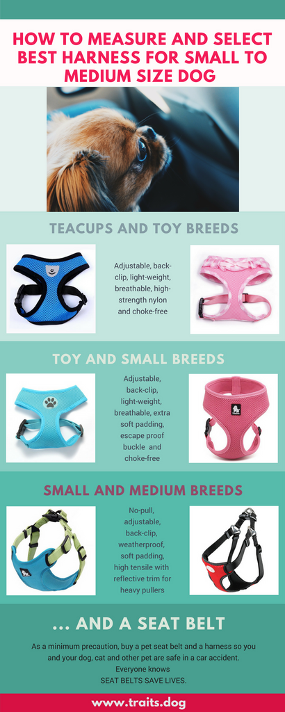 How to measure and select best harness for small to medium size dog