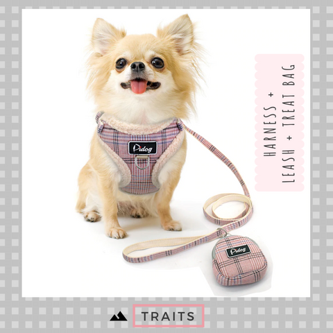 Small Dog or Cat Front and Back Clip Plaid, Breathable Harness with Leash and Treat Zip Bag Set - No-Pull, No-Choke Harness with Plush Trim