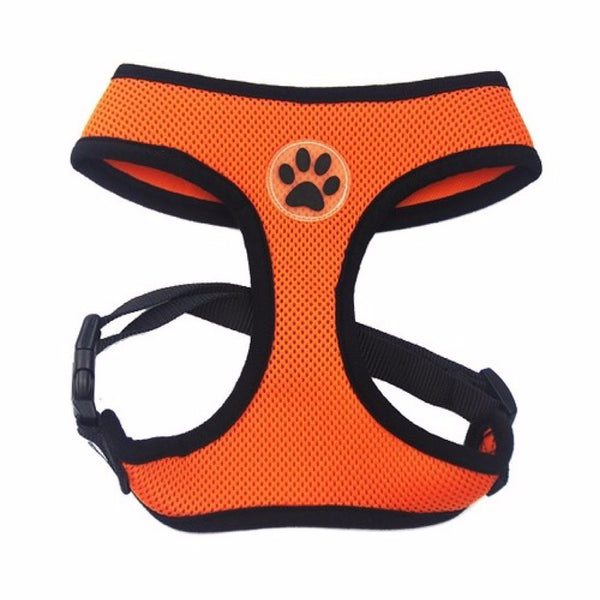 Paw Print - Vest Harness and Leash Set for Small Dog or Cat