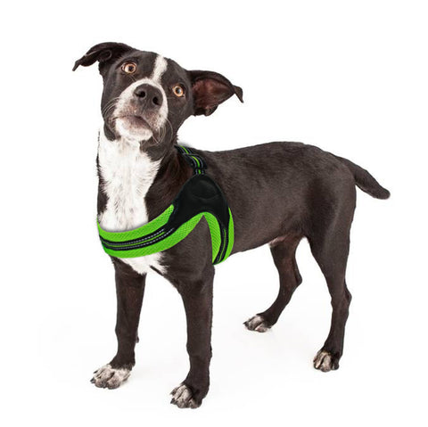 Dog Harness - No-Pull, Reflective for Medium Size Dog