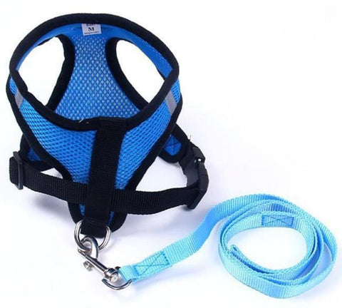 Breathable Dog's Vest Harness + Leash - Light and Comfortable for Small Breeds