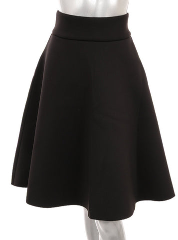 A-Line Skirt with Back Zipper