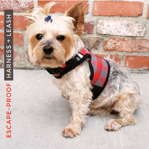 Super Soft with mesh lining this Naughty Plaid Vest Harness and Leash Set is made for Dog and Cat. Escape-proof buckle is for naughty wigglers. This harness is Not Intended for strong pullers