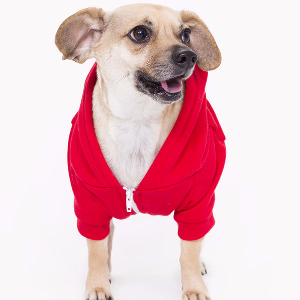 Watch * Dog - Small Teacup Dog's Pet Fleece Zip X-Small Hoodie in Three Colors for dog's up to 7 lbs