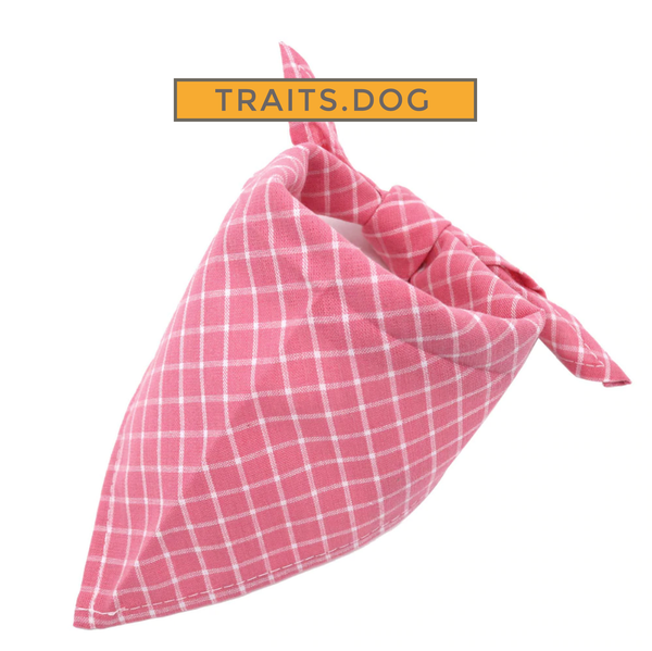 Rose Pink Plaid or Checkered Dog or Cat Bandana Scarf for Small Breeds