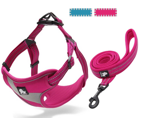 Well-constructed Dog Sport Reflective Vest Harness and Leash are made of premium quality, weatherproof materials and durable hardware. Safe, comfortable, convenient and durable for walking, running, hiking and riding in vehicles. NOT RECOMMENDED FOR DOGS UNDER 10 lbs.