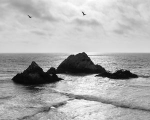 Seascape Photograph, Seal Rocks San Francisco