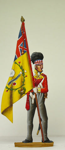 Officer with Regimental Colours