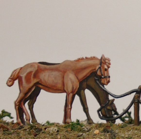 Two unsaddled horses - Glorious Empires-Historical Miniatures