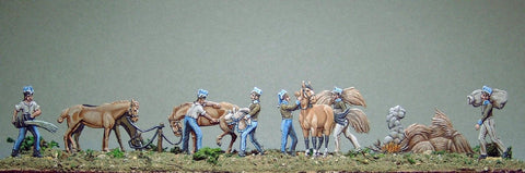 AA- French Cavalry, horse maintenance, full set