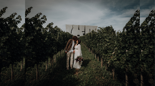 Daniela & Jens' Austrian Vineyard Wedding