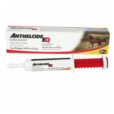 Anthelcide Equine Wormer Paste Twisted Bit