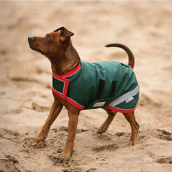 Horseware RAMBO®  Dog Blanket Green with Red Twisted Bit