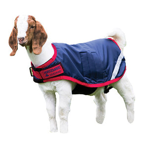 Horseware Goat Coat Navy with Red Twisted Bit