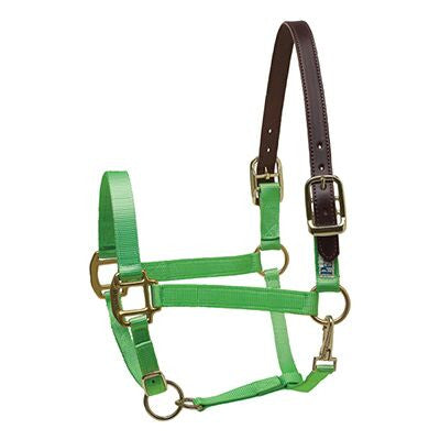Perri's Premium Nylon Safety Halter Lime Green Twisted Bit