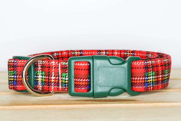"""The Jasper"" Dog Collar"