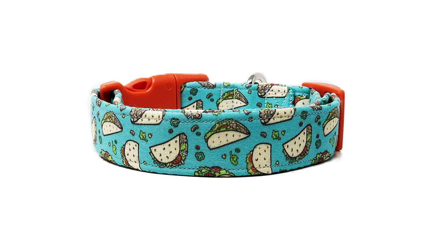 Taco Dog Collar | Torchy - Uptown Pet Wear