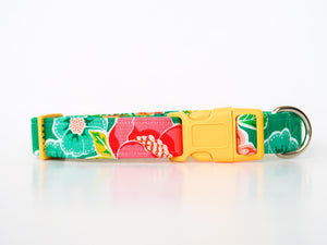 Floral Handmade Dog Collar in Green | Ivy