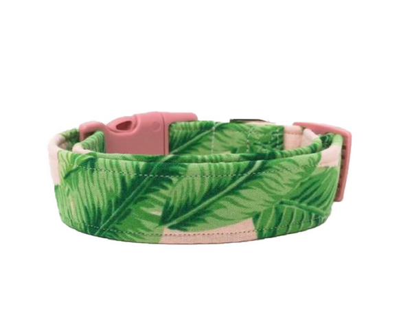 The Kailua Dog Collar